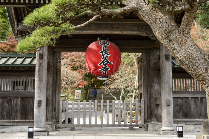 Hasedera Temple Architecture Building Exterior Built Structure Day Entrance Hasedera Temple Japanese Temple No People Outdoors Place Of Worship Sky Temple Tree