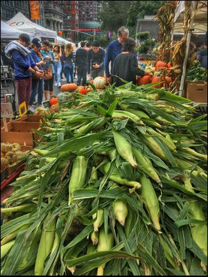 Fall Scene @ Union Sq. Mkt. - 10/10/16 As I Sees It Casual Arrangement Of Corn EyeEm StreetPhotography, NYC IPhone W/ Snapseed Blend In Layers Malephotographerofthemonth Market Stall Market Vendor People Using Phone Cameras To Remember The Moment Pumpkins Too The Journey Is The Destination