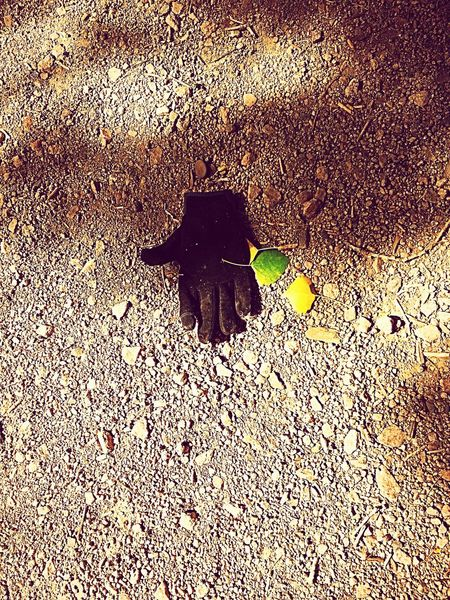 Something you never want to see in a secluded nature trail, a glove 😳 God knows what happen here, one too many horror movies, LOL😂 West Wetlands, Yuma, AZ Scary Thought IPhone Photography Pattern No People Sunlight Backgrounds High Angle View Nature Shadow Outdoors Close-up Footpath
