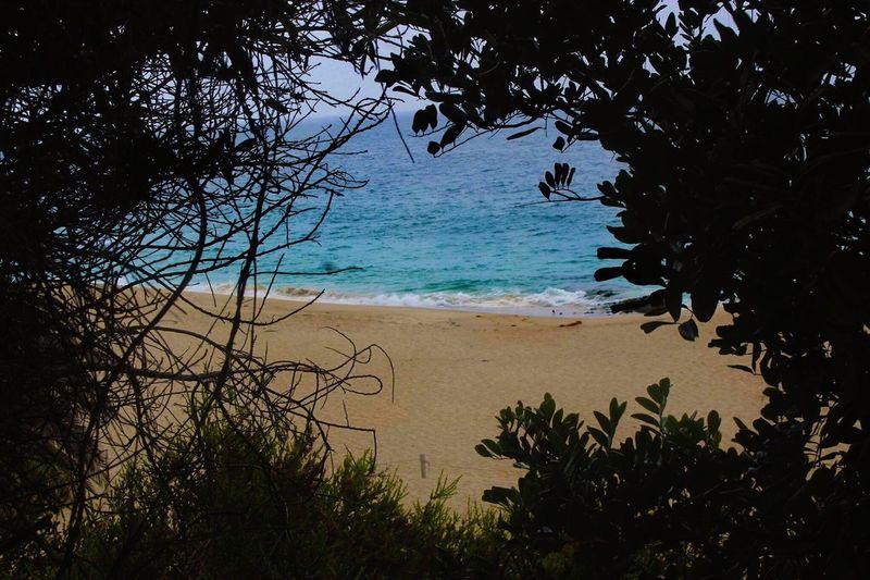 Frame Beach Thousandsteps