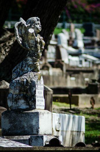 Tombstone Sculpture Outdoors Memorial Cemetery Photography Nikon D5100  Graveyard Beauty Cherub Statue No People Nature