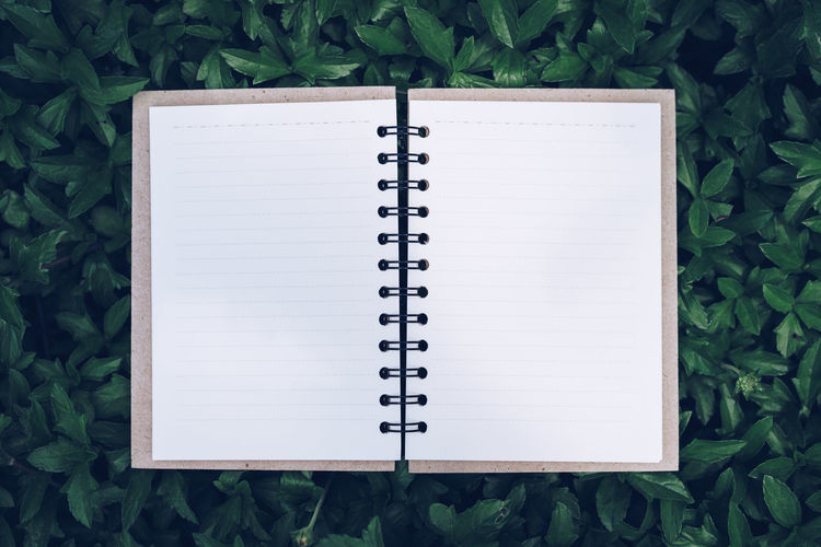 Directly above view of open blank book on plants