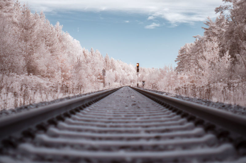 Surface level of railway tracks along trees in infrared light spectrum