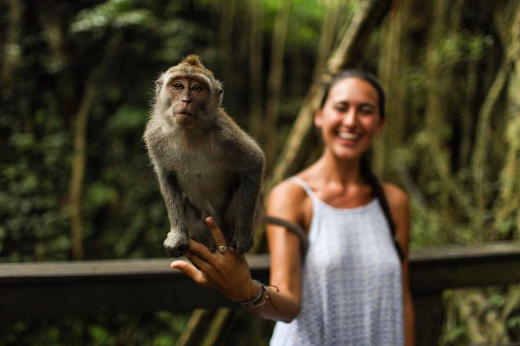 Monkeying around. Smiling Monkey Monkeys INDONESIA Sacred Monkey Forest Ubud Animal Animal Lover