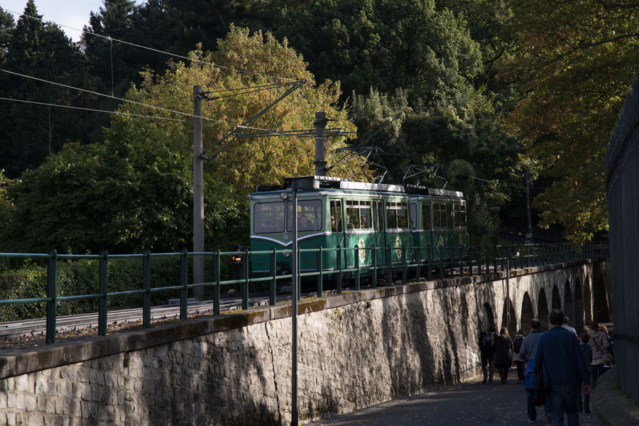 Drachenfels, Zahnradbahn an der Mittelstation Day Downhill Outdoors Public Transportation Rack Railway Railroad Rails Railway Station Rear View Tourism Transportation Tree Unrecognizable People Waggons