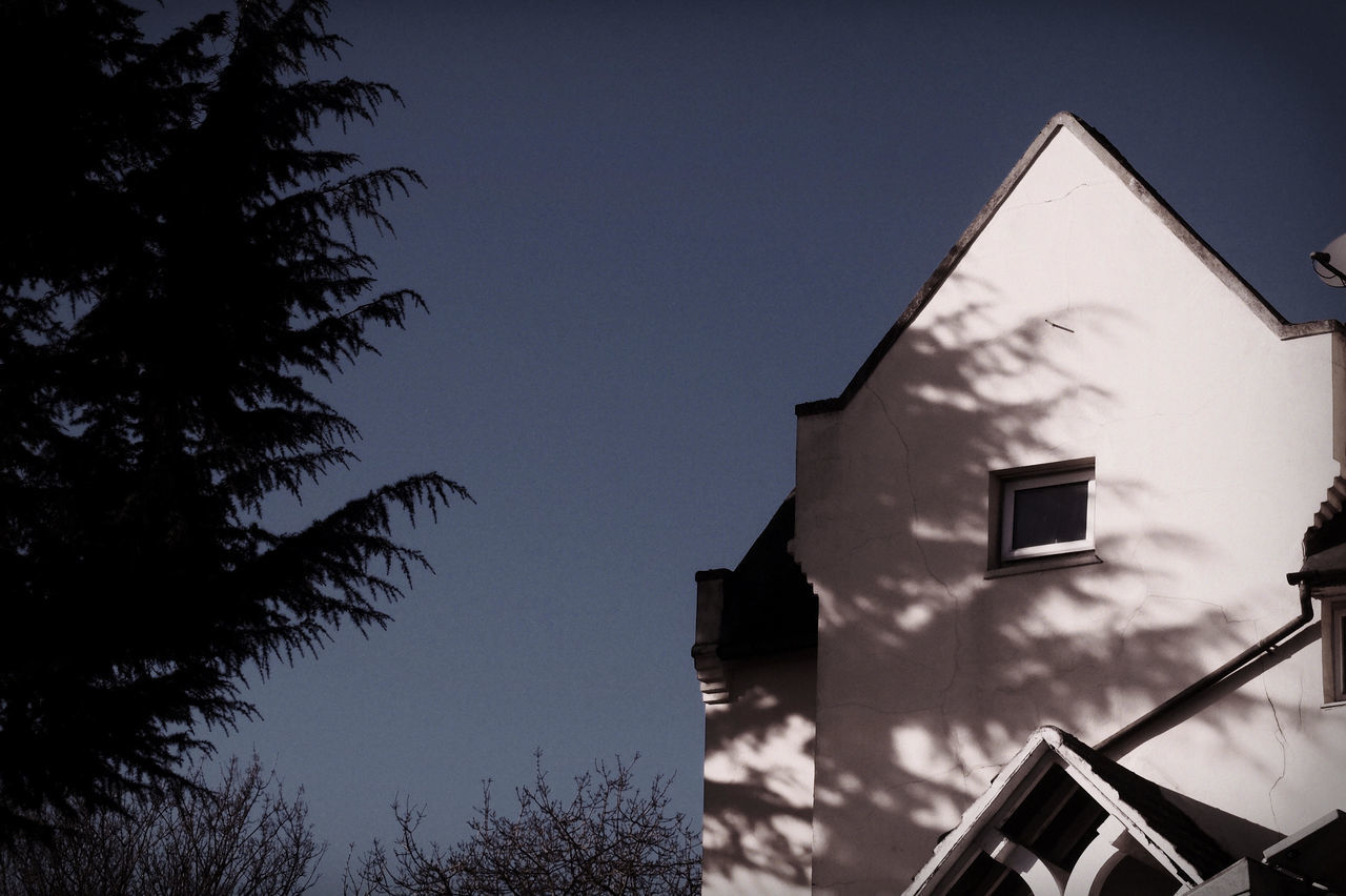 Low Angle View Of Silhouette Trees By House During Sunny Day