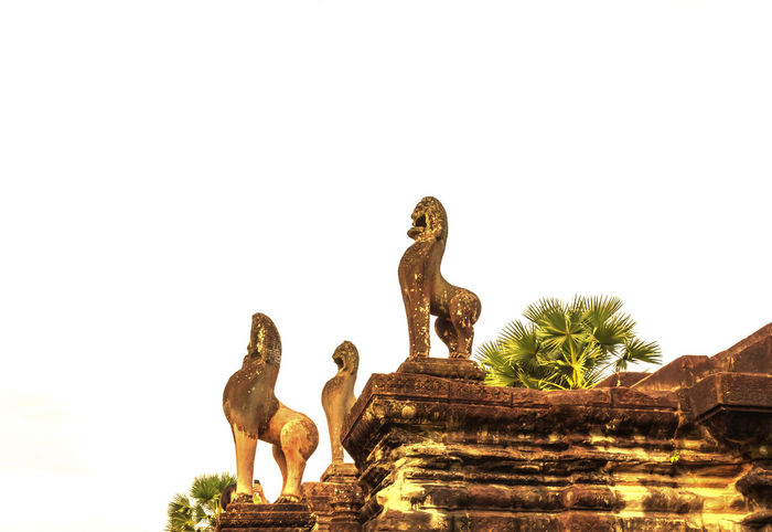 Angor Angor Wat Cambodia Cambodia Photos Cambodian Cambodians Castel Castle Castle Ruin Castle View  Castle Walls Castles Hindu Hindu Culture Hindu God Hindu Goddess Hindu Gods Hindu Style Hinduism Ruin Ruined Building Ruins Architecture Travel Travel Photography Travelling