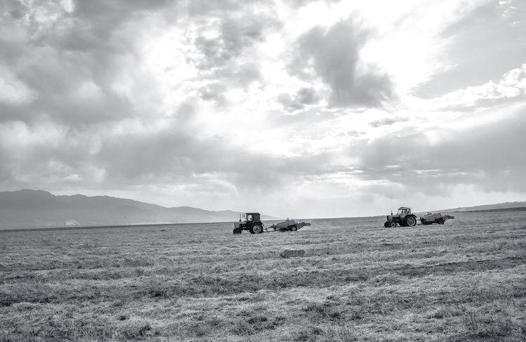 Farmland of Ismayilli, Azerbaijan Autumn Azerbaijan Cloudy Day Cloudy Sky Farmland Ivanovka Working Working Hard Azerbaycan Farmland Countryside Farmlandscape Ismayilli Tourism Destination Tourist Destination Tractors Village