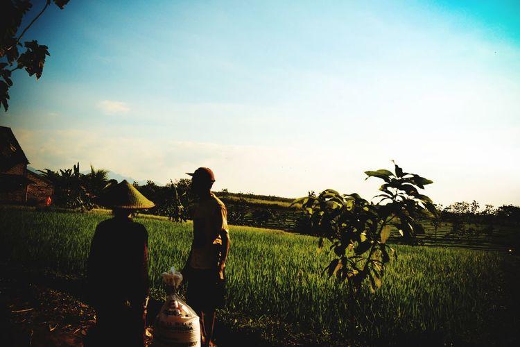 Beautiful Indonesian farmer
