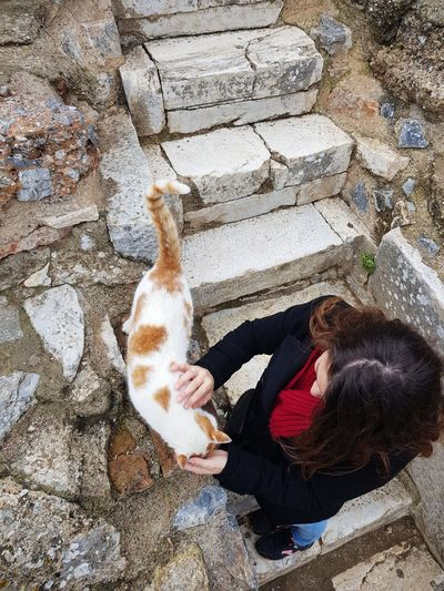 Petting Petting Animals Stray Cat Street Cat Cat Kitty Turkey Ruins Efes Ephesus Izmir Cat Lover Kitten Feline Bonding Brunette Girl Woman Young Adult High Angle View One Person Outdoors One Animal Real People Pets Animal Themes People Lifestyles Human Hand Young Adult