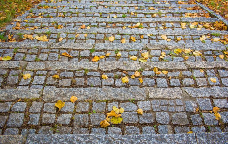 Old stone as background Footpath No People Day High Angle View Street Cobblestone Stone Autumn Backgrounds Plant Part Leaf Nature City Outdoors Textured  Change Architecture Paving Stone Direction Full Frame Leaves