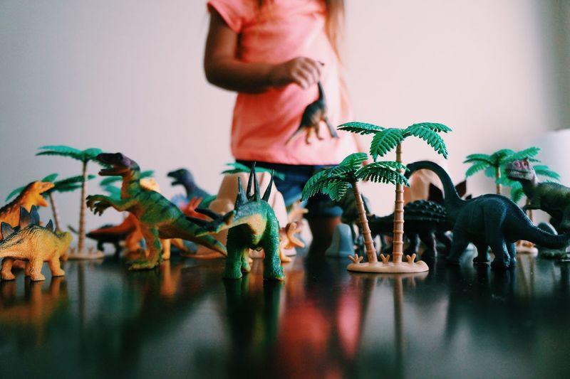 Dinosaur Toys Arranged On Table At Home