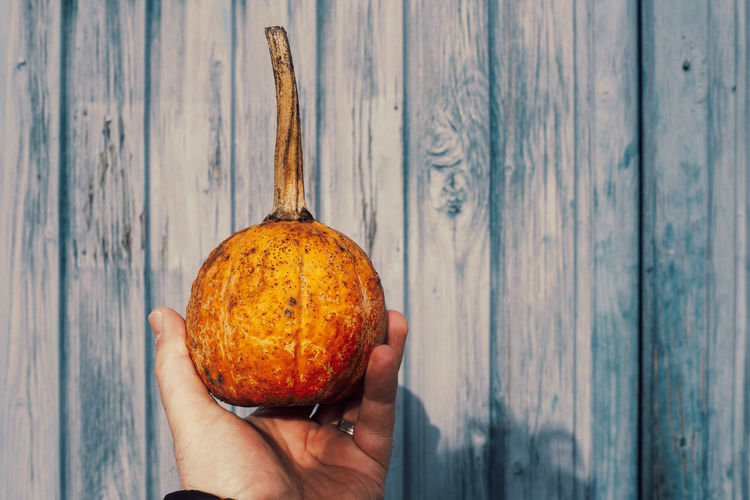 Close-up of person holding apple on wood