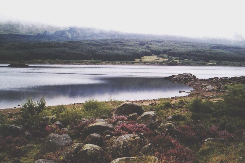 Nature Water Beauty In Nature Tranquil Scene Tranquility Growth Scenics Outdoors Lake Day No People Landscape Sky Loch  Scotland Scotland 💕 Scotlandsbeauty Loch Doon