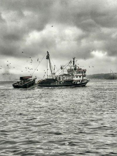 İyi akşamlar Good night 🙋🙋🙋 Black & White Skyporn Bosphorus Clouds And Sky Good Night Streamzoofamily EyeEm Best Shots Cloudporn Landscape Istanbul Turkey