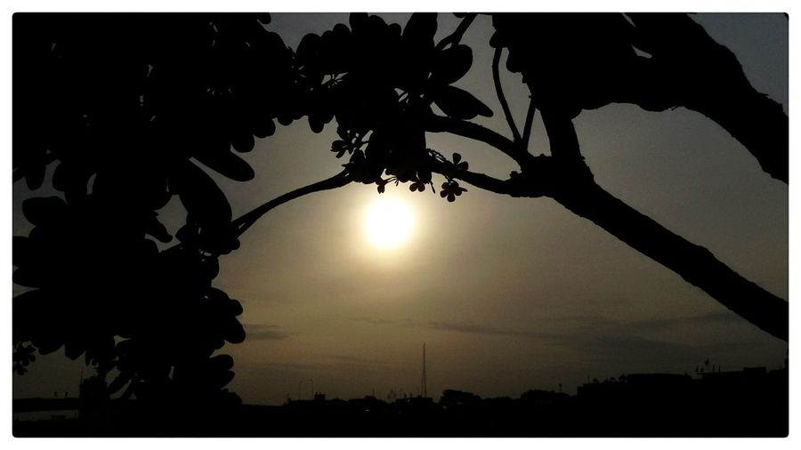 Sunrise@ Chao Phaya River . EyeEm Best Shots EyeEm Gallery Morning Sky, Beauttiful sky. Taking Photos .