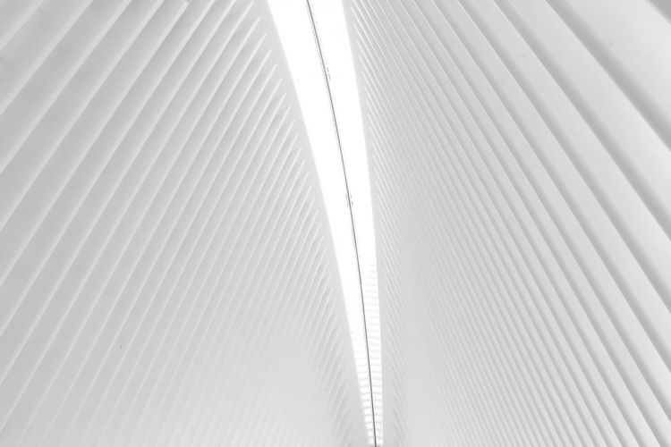 The Occulus in New york Landmark Landmarks New York New York City Pattern Full Frame Backgrounds No People Architecture Built Structure Low Angle View Indoors  Day Textured  Close-up Metal Modern Striped Sunlight Repetition Wall - Building Feature Abstract White Color Ceiling White Background Design Pattern, Texture, Shape And Form Urban Geometry Symmetry City Life City Architecture Architectural Feature Architectural Column
