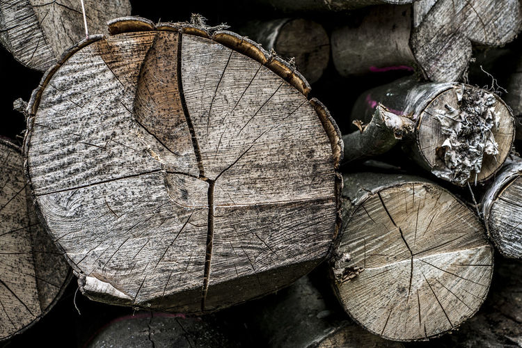 Log Wood - Material Timber Wood Firewood Tree Close-up No People Deforestation Lumber Industry Stack Textured  Forest Fuel And Power Generation Nature Environmental Issues Pattern Outdoors Day Fossil Fuel Woodpile Tree Ring