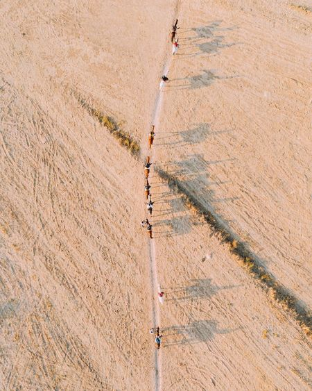 Aerial view of people with horses walking on footpath amidst field