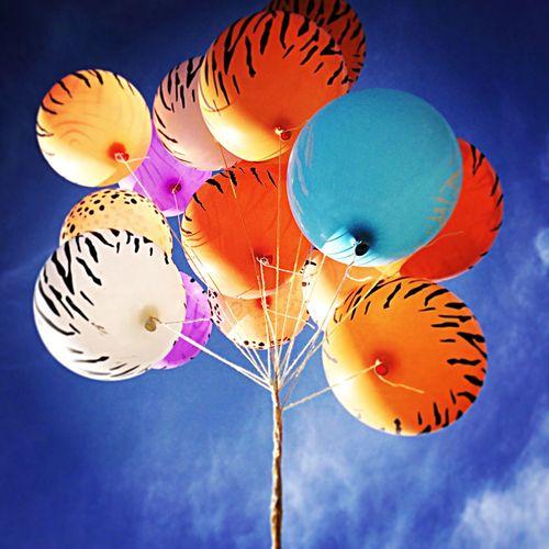 Globos Baloons