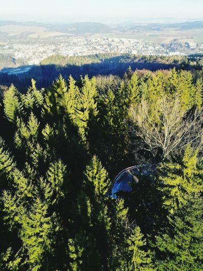 Lookout Ústí nad Orlicí Beauty In Nature Nature Sunlight Landscape Czech Republic🇨🇿 Outdoors Lookout Tower Forest