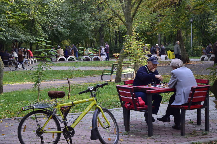 Life Bicycle Day Large Group Of People Leisure Activity Lifestyles Men Nature Outdoors Real People Sitting Togetherness Tree