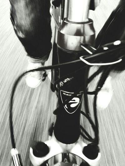 The Cyclist Tour De Vin Enjoying Life