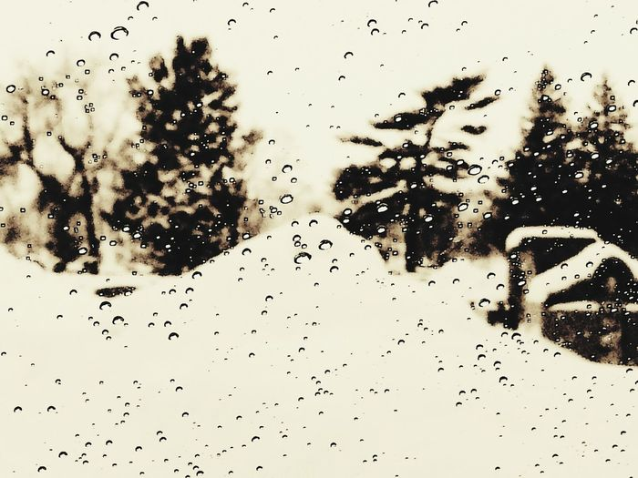 Eye For Photography Eyeem Winter Snow ❄ Winter 2013-2014♥