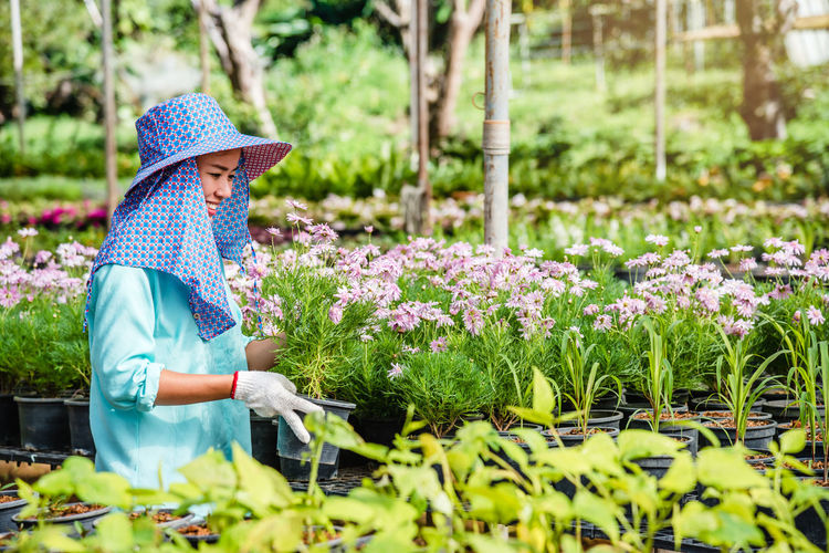 Rear view of woman working on flowering plants