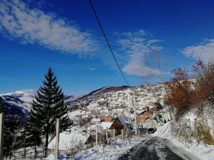 Road amidst trees and buildings against sky during winter