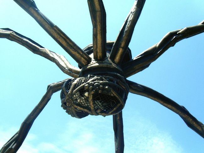 Bilbao Basque Country Bizkaia SPAIN Guggenheim Bilbao Spider Spider Bilbao Art Architecture Spider Monument Modern Art Monument Photography Sculpture Louise Bourgeois Maman