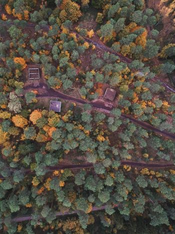 Fall Colors Fall Colors Landscape Dji Travelling Travelphotography Djiphotography Full Frame Backgrounds Pattern No People High Angle View Multi Colored EyeEmNewHere Nature Day Outdoors Beauty In Nature Land Design