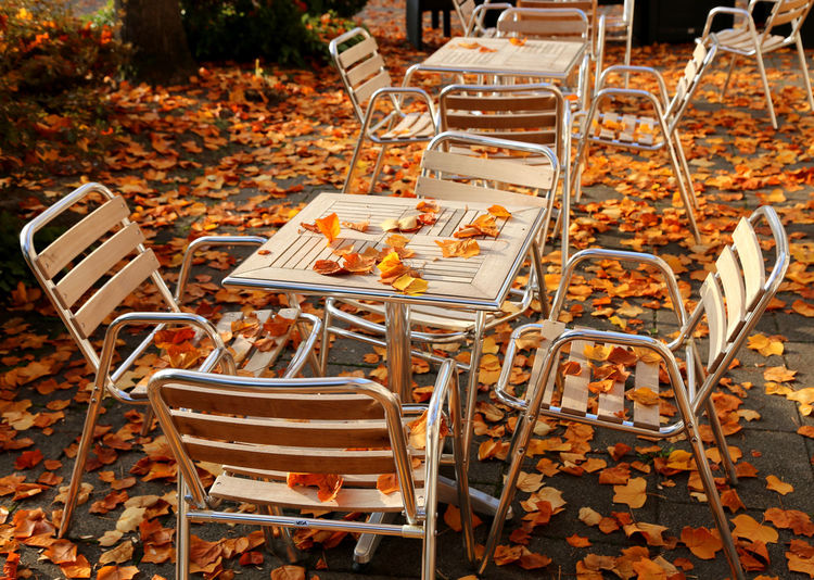 Absence Arrangement Change Empty Garbage Group Of Objects Heap In A Row Large Group Of Objects Leaves Nature Autumn Leaves Cafe Chairs Authentic Moments Autumn Seat Side By Side Still Life Brown Leaves Terrace Terasse Cafestühle Autumnbeauty Autumn Colors Autumn Collection