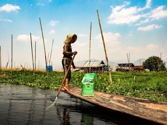 Floatinggarden Myanmar Inle Working Occupation Real People Men Manual Worker Water One Person Sky One Man Only Only Men Adult Agriculture