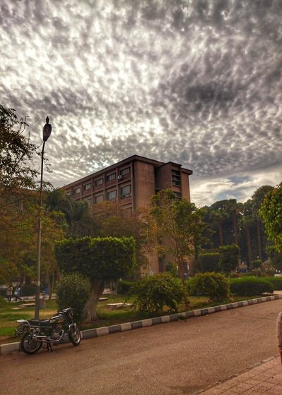 Upper egypt💓Cloud - Sky Built Structure Architecture Building Exterior Sky Tree No People Outdoors City Nature Grass Day Travel Destinations Cityscape Beauty In Nature Scenics Silhouette Sky And Clouds Dramatic Sky Tranquility Tranquil Scene EyeEm Best Shots EyeEm Nature Lover Capture The Moment Travel Distination The Great Outdoors - 2017 EyeEm Awards The Street Photographer - 2017 EyeEm Awards