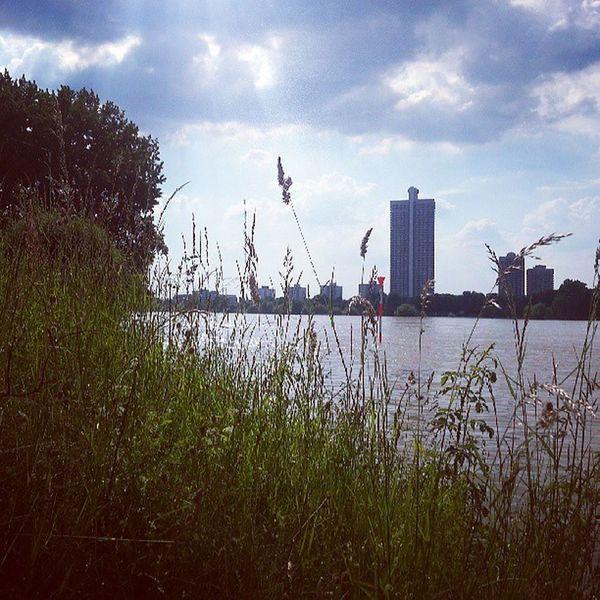 Chillout am Wasser #koeln #cologne #rhein #rhine Cologne Rhein Rhine Koeln