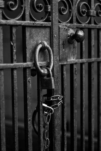 Close-up of padlock on metal gate