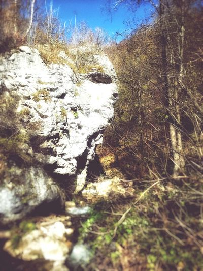 Stone head Outdoors Nature The Greatest Artist