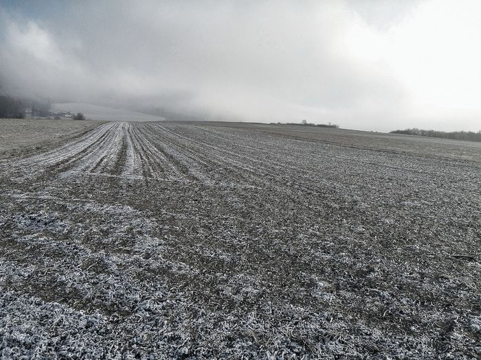 Agriculture Sky Outdoors Day No People Cold Temperature Winter Snow Ice Crystals Crystal