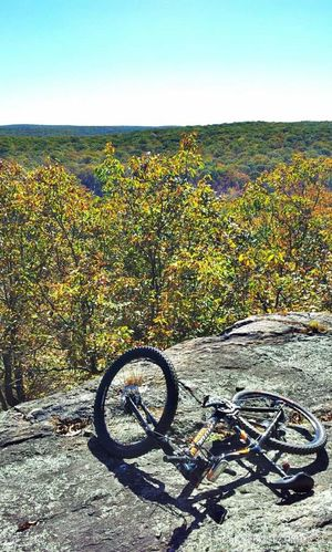 New Jersey Autumn Leaves New Jersey Parks Wildcat Mountain State Park Mountain Bike Trail. Forest View Hiltop View Mountain Bike