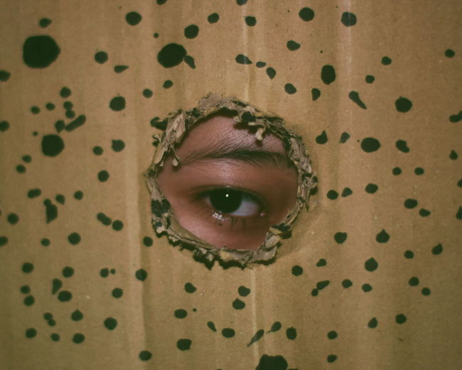 Portrait of man seen through torn cardboard