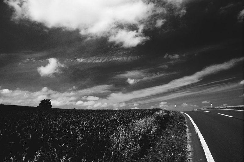 あの丘まで… Hello World Taking Photos Traveling Travel Photography Summer Blackandwhite Sky_collection Sky And Clouds Film Biei