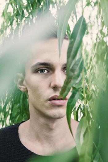 Portrait of man amidst twigs
