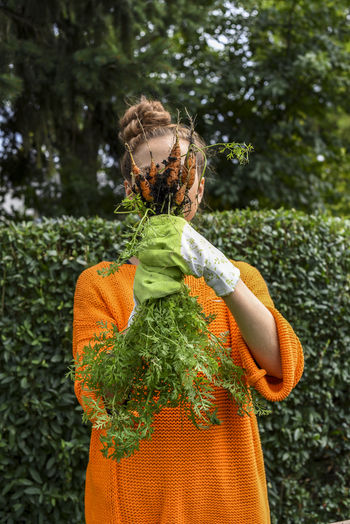 Close-Up Of Woman Holding Fresh Carrots At Vegetable Garden
