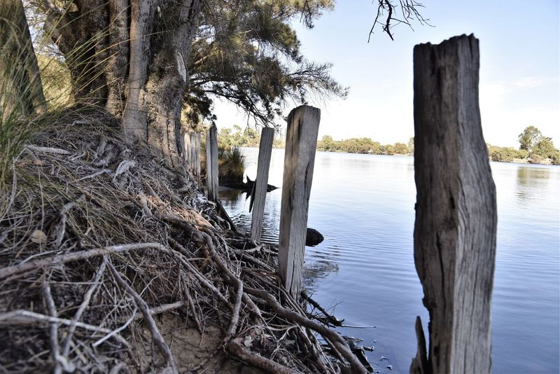 River walkabout Tree Tranquility Water Wooden Post Outdoors No People Taking Photos Enjoying Life Relaxing