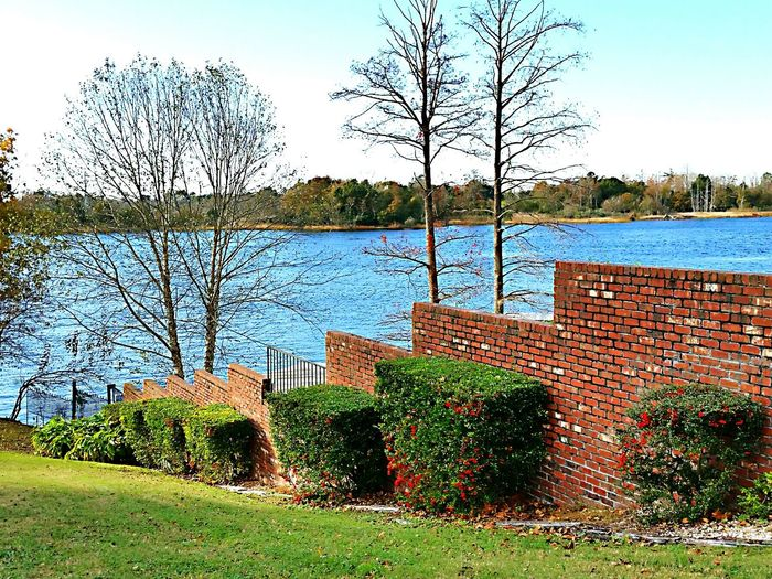 On The Cape Fear River Wilmingtonnc Landscape_photography Taking Photos Enjoying The View Enjoying Nature Bare Trees
