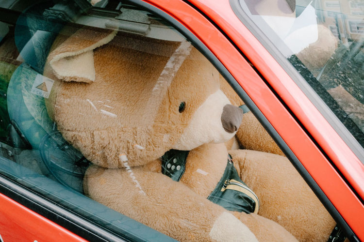 Ted finally found his fetish. In Berlin you can be what you want to be. Bear Berlin Close-up Co Driver Costume Fetish Fetish Model Funny Leather Mode Of Transport Relaxation Streetphotography Teddy Transportation Vehicle Fujifilm X-pro2 Fujifilm The Week On EyeEm Editor's Picks