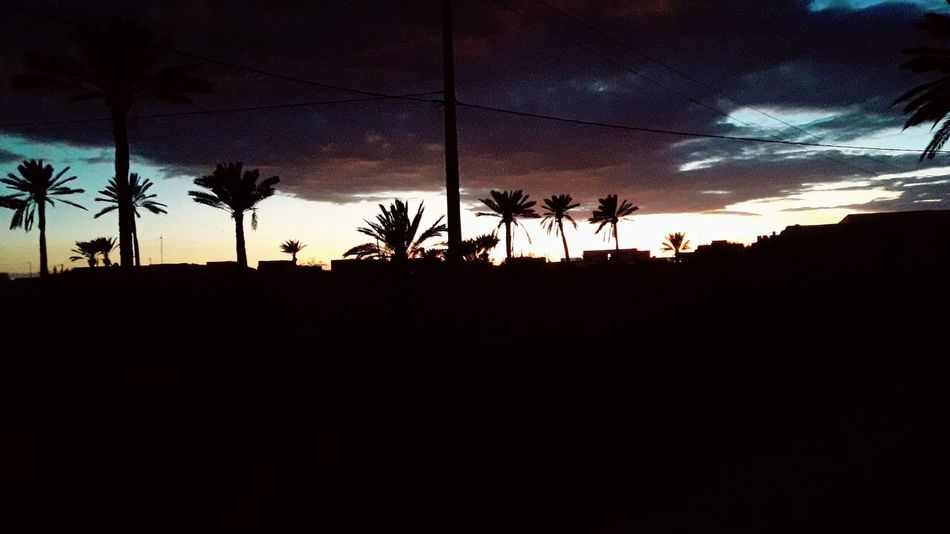 Perspectives On Nature Silhouette Sunset Sky Tree Nature Outdoors No People Beauty In Nature Night Landscape Scenics Nature جربة  تونس ڨلالة Be. Ready.