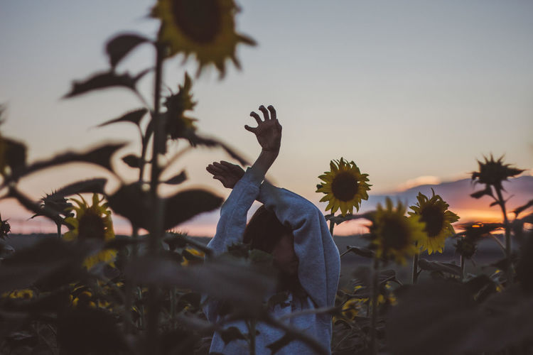 Woman Body Part Human Body Part Hand Hands Field Sunflower Sunflower Field Sky Plant Sunset Real People Nature Leisure Activity Lifestyles One Person Tree Silhouette Men Growth Outdoors Beauty In Nature Women Focus On Foreground Clear Sky Human Arm Gesturing Arms Raised My Best Photo