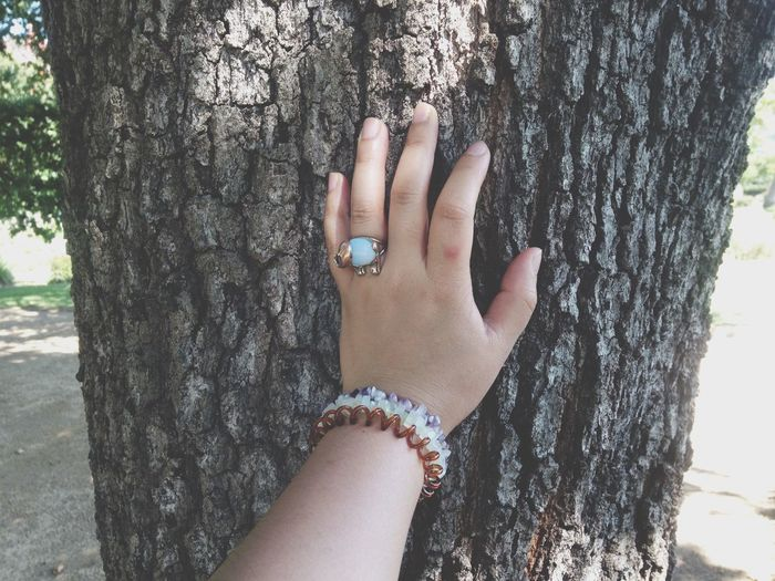 Touch Popular Photos Eyeemhuman Touch Ways Of Seeing Human Body Part Hand Women Human Hand Tree Real People Leisure Activity Adult Body Part Sunlight Nail Lifestyles